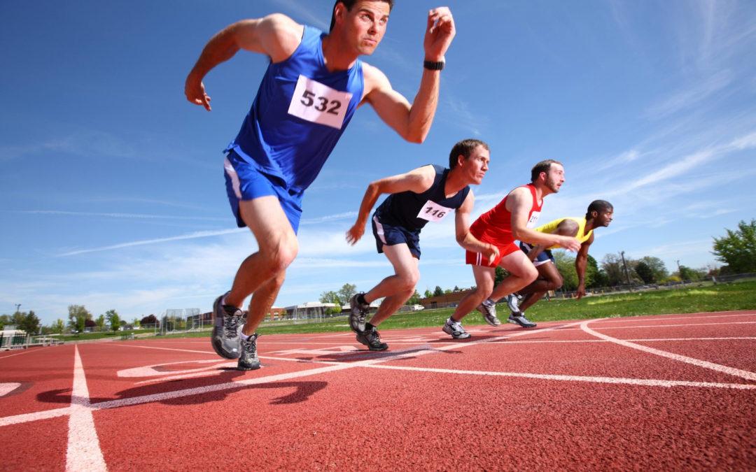 Направления спортивной деятельности