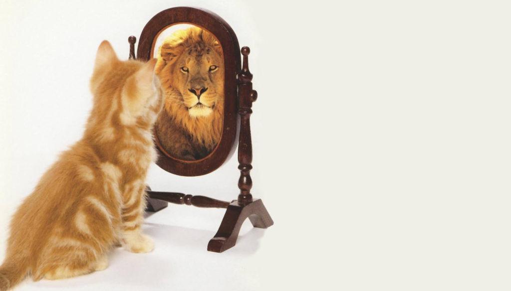 Психологические особенности самооценки