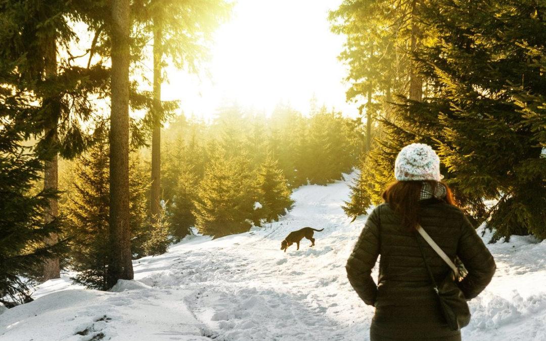 как сохранить здоровье здоровье зимой